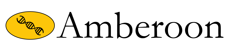 ambreco-white.png