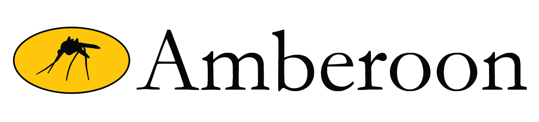 Amberoon Inc